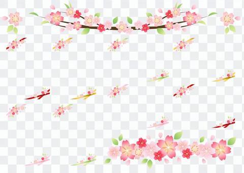 櫻花般的花框設置透明螞蟻