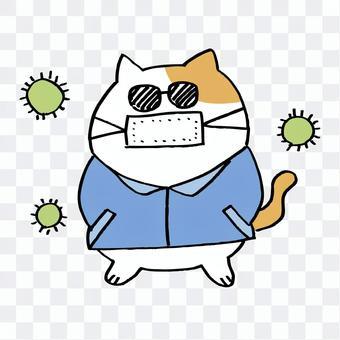 花粉熱病貓