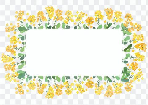 明亮的油菜花裝飾框架