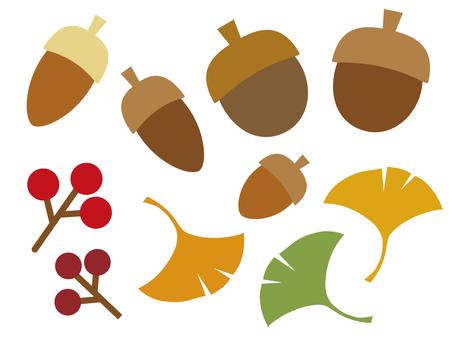 Autumn leaf and nut illustration