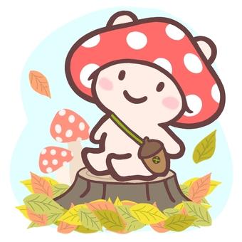 Nico Usa Mushroom