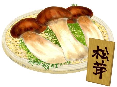 松茸(配盤子)