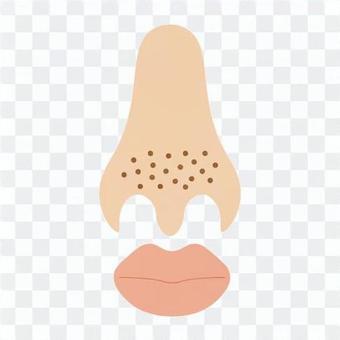 美(草莓鼻子的形象)