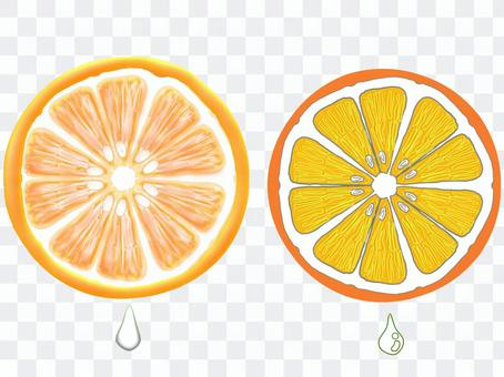 圓形橙片(2種圖案)