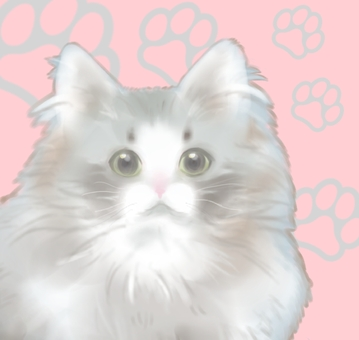 Mofumofu cat