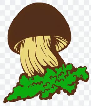 小草蘑菇07