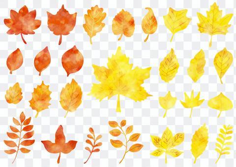 葉っぱ 水彩 秋カラー