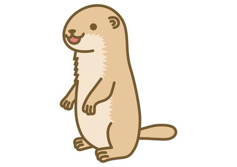 可愛的土撥鼠插圖
