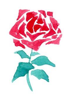 玫瑰花紅色