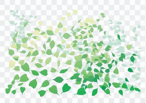 Buddhist leaves