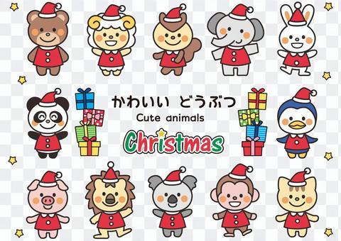 かわいい動物たち クリスマス