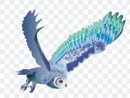 Fly 梟 02