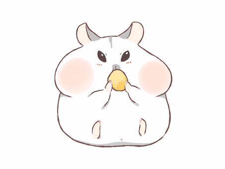 倉鼠 (白色) mogumogu