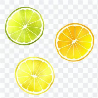 フルーツの輪切り