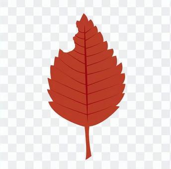낙엽 (빨간색)