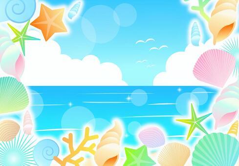 夏天的貝殼框架