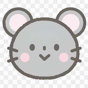 可愛的動物老鼠