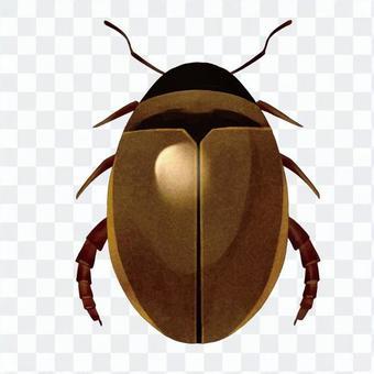 潛水甲蟲2