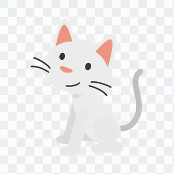 Cat - sitting cat