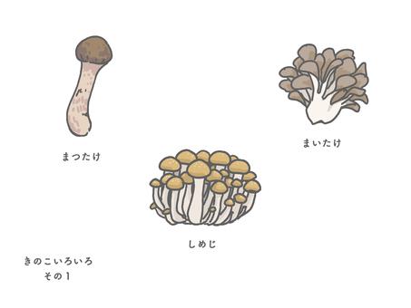 秋味/各種蘑菇1個