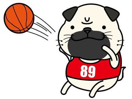 Pug's basketball shoot