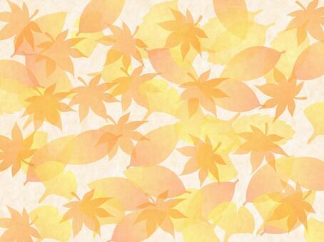 很多落葉〜♪