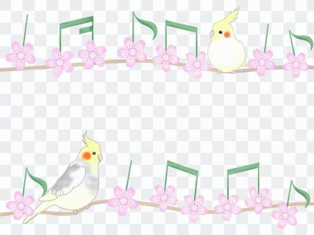 小鸚鵡和櫻花筆記框架
