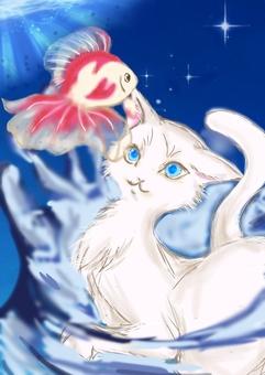 花式世界貓和金魚