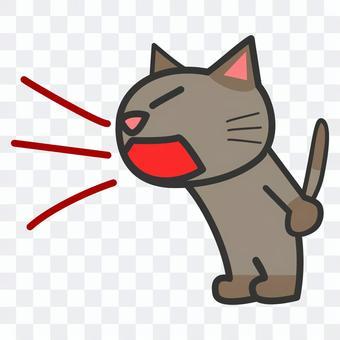 貓大聲尖叫