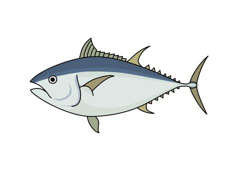 藍鰭金槍魚