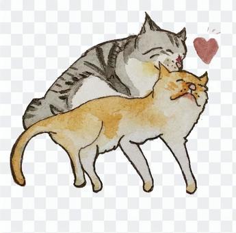 Good friend cat