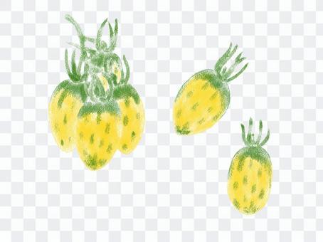 意大利番茄恐龍蛋02