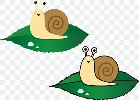 蝸牛(帶或不帶主線)