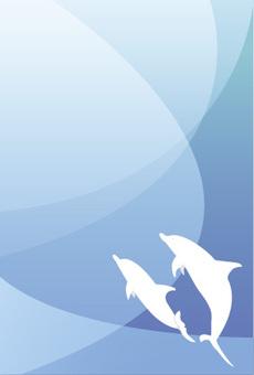 海中的海豚
