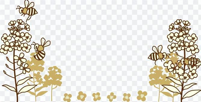 Bee and rape flower frame