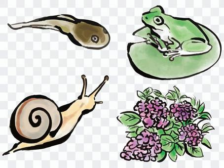 Creatures of the rainy season