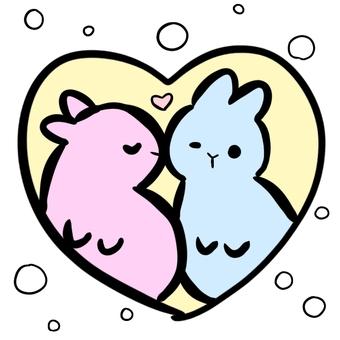 兔子情侶接吻