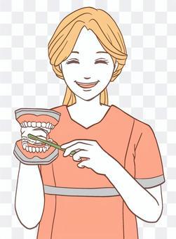 帶有牙齒模型的牙科保健員(簡單)
