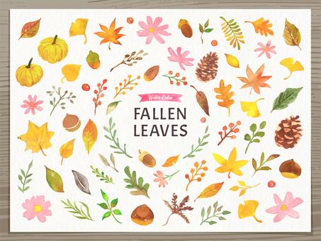 Autumn plant watercolor illustration set