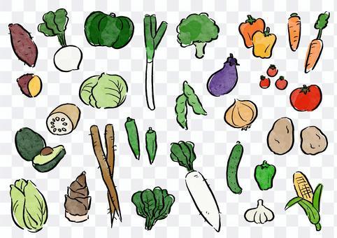 手寫材料蔬菜套裝(彩色)