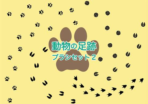 Animal footprint brush material collection 2