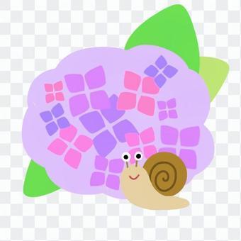 カタツムリと紫陽花(紫)