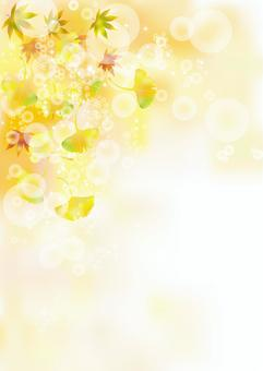 紅葉&銀杏4