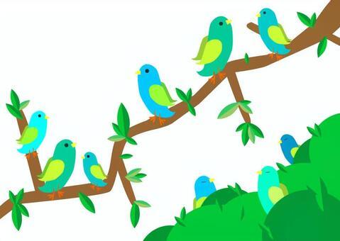 森林鳥賀卡
