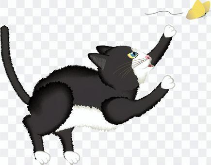 猫 ペット 白 黒 蝶々 捕まえる