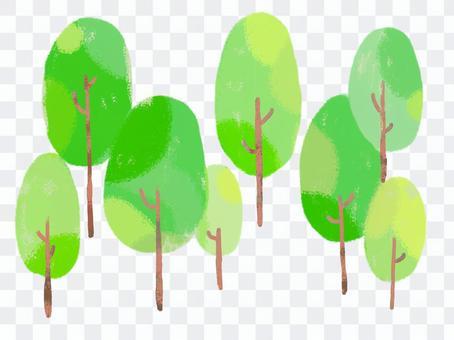Wood・tree