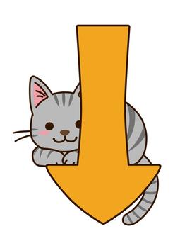 Down arrow and Sabatra cat