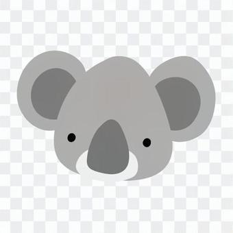 Koala's face