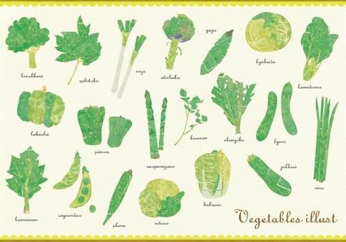 蔬菜(綠色)