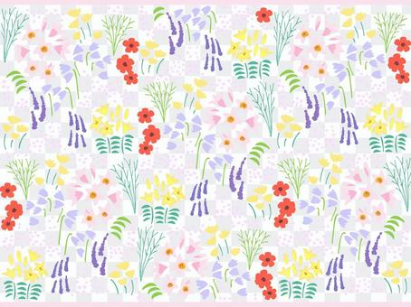 Various flower and plant wallpapers